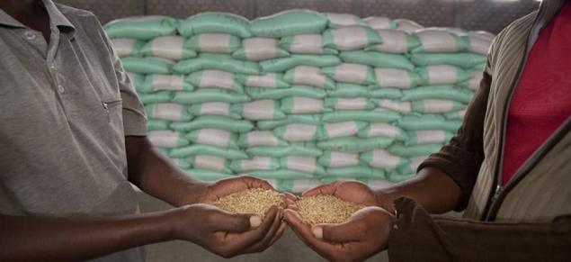 Ethiopia Wants to Produce Its Own Fertilizers