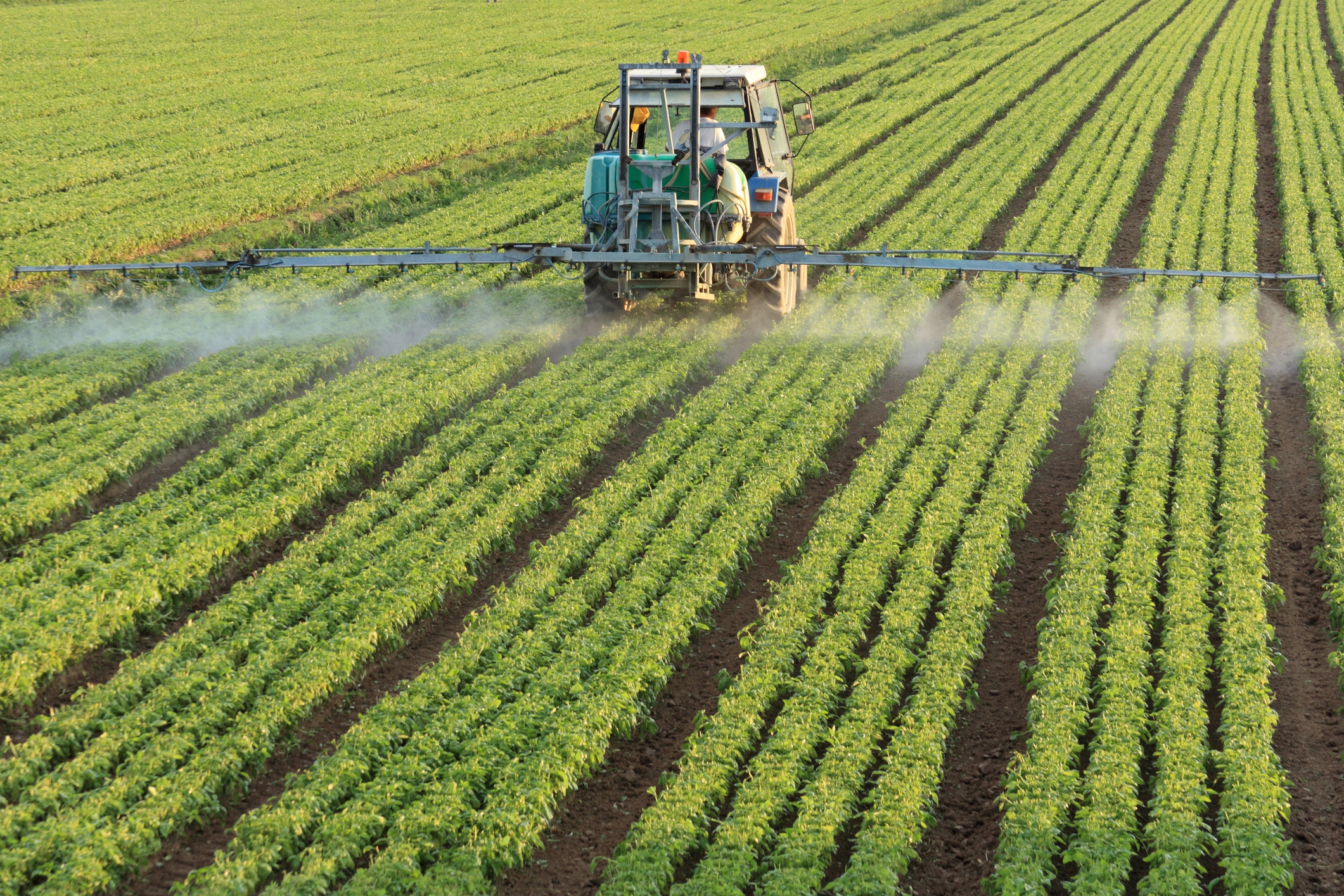 Global Phosphate Fertilizers Demand Grows 3.2 PC Annually