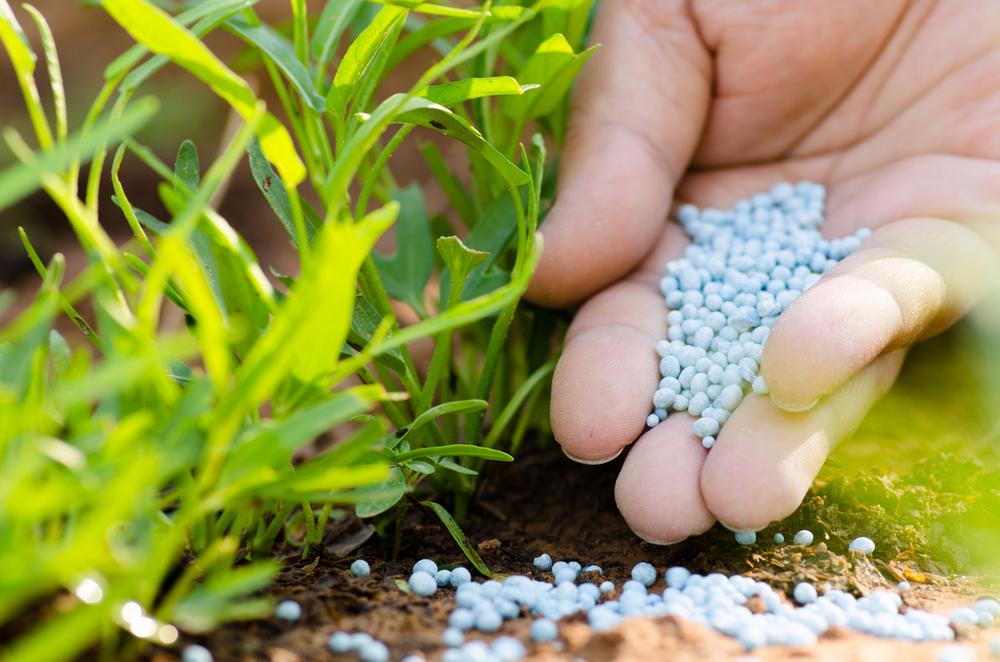 FAO's Report Predicting Fertilizer Trends to 2018