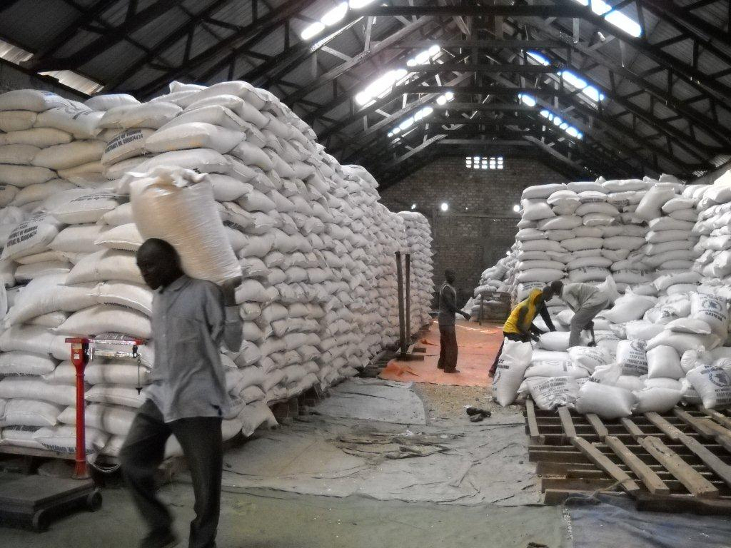 Africa's Fertilizer Sector Poised to Benefit from Competition