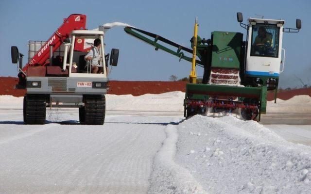 Australian Potash Company Update: Trigg Mining, Kalium Lakes & Salt Lake Potash