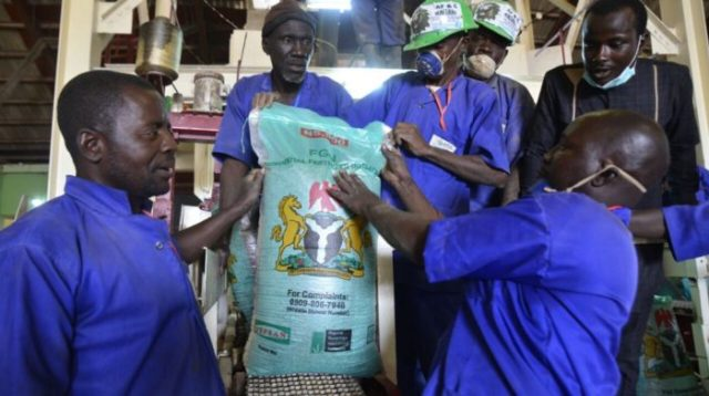 Greening Africa: Nigeria Bans Imports of Poor-Quality Fertilizer Blends