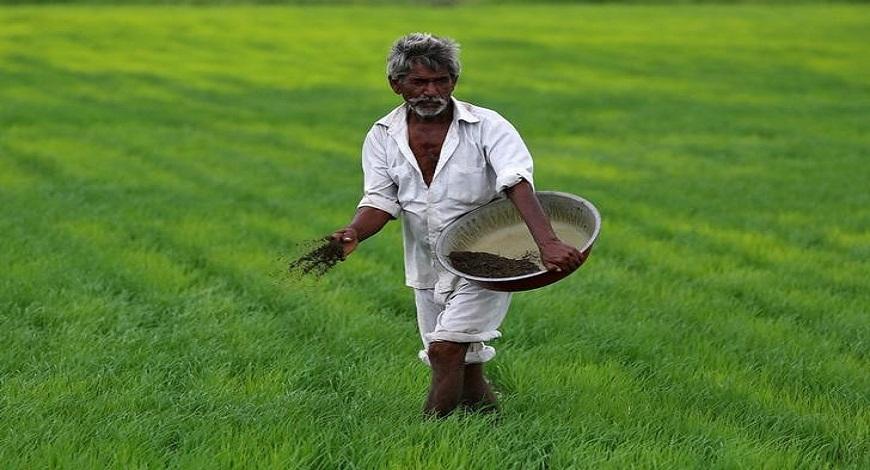 India's Fertiliser Drain: Urea of Darkness
